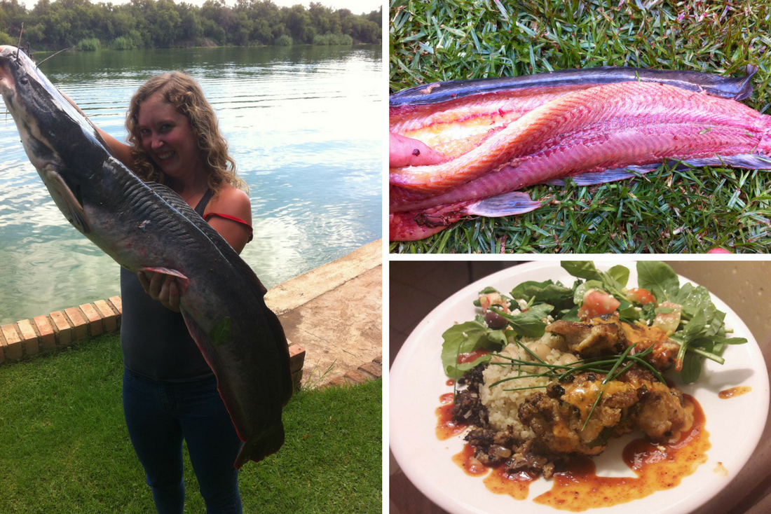 Preparing African Sharptooth Catfish/Barbel… From killing to skinning to cooking!